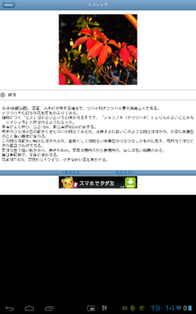 Screenshot_2012-10-20-19-14-17.png
